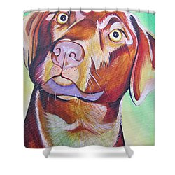 Shower Curtain featuring the painting Green And Brown Dog by Joshua Morton