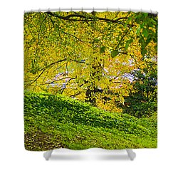 Green And Yellow Shower Curtain by Brian Wallace