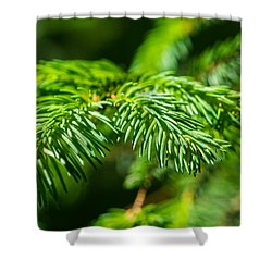 Green Christmas Tree 2 Shower Curtain