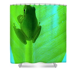 Shower Curtain featuring the photograph Green Day by Faith Williams