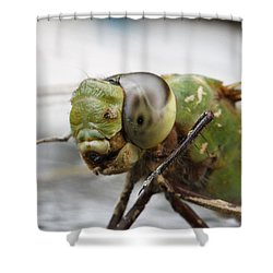 Green Dragon  Shower Curtain by Shoal Hollingsworth