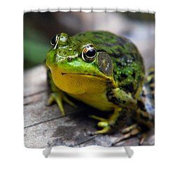 Green Envy Shower Curtain by Christina Rollo