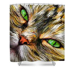 Green-eyed Tortie Shower Curtain