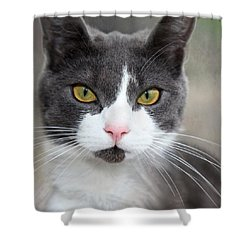 Shower Curtain featuring the photograph Green Eyes by Annie Snel