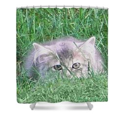 Shower Curtain featuring the photograph Green Eyes by Gena Weiser