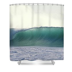 Green Feather Shower Curtain by Sean Davey