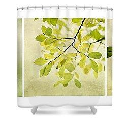 Green Foliage Triptychon Shower Curtain by Priska Wettstein