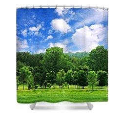 Green Forest Shower Curtain by Elena Elisseeva