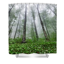 Green Giants Shower Curtain by Evgeni Dinev