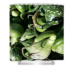 Shower Curtain featuring the photograph Green Goosenecks by Caryl J Bohn