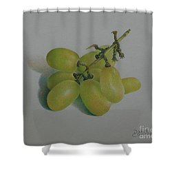 Shower Curtain featuring the painting Green Grapes by Pamela Clements