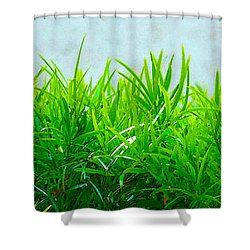 Green Hedge - The Getty Shower Curtain