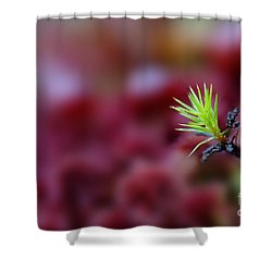 Green In A Sea Of Red Shower Curtain by Dan Friend