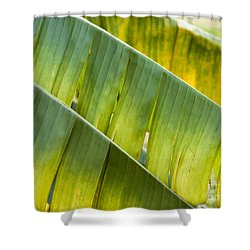 Green Leaves Series 14 Shower Curtain by Heiko Koehrer-Wagner