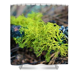 Green Lichen Shower Curtain