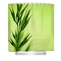 Green Shower Curtain by Lois Bryan