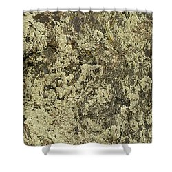 Shower Curtain featuring the photograph Green Moss by Les Palenik