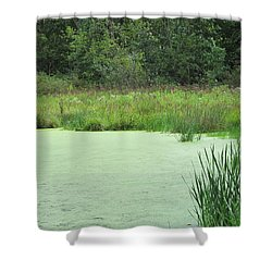 Shower Curtain featuring the photograph Green Moss by Tina M Wenger