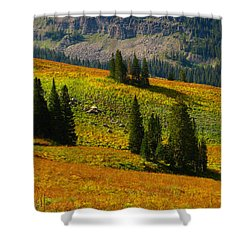 Green Mountain Trail Shower Curtain by Raymond Salani III