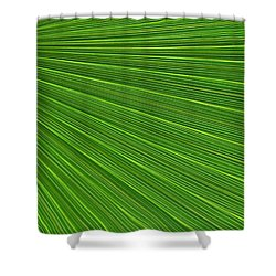 Green Palm Abstract Shower Curtain by Kathleen Struckle
