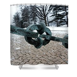 Green Patina Shower Curtain by Michael Porchik