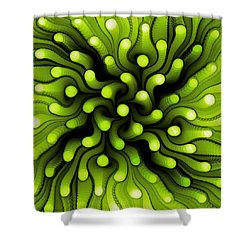 Green Sea Anemone Shower Curtain by Anastasiya Malakhova