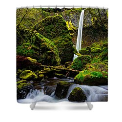 Green Seasons Shower Curtain by Chad Dutson