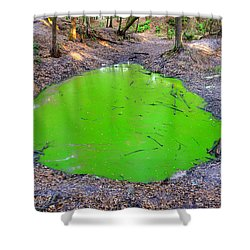 Green Spill Shower Curtain by David Lee Thompson