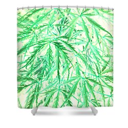 Shower Curtain featuring the photograph Green Splender by Jamie Lynn