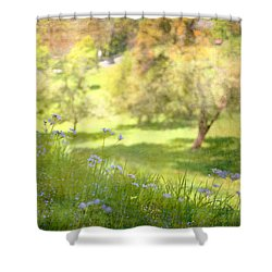 Shower Curtain featuring the photograph Green Spring Meadow With Flowers by Brooke T Ryan