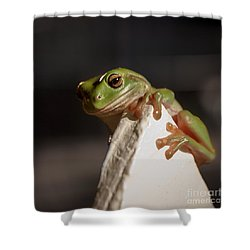 Green Tree Frog Keeping An Eye On You Shower Curtain