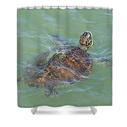 Green Turtle Surfacing Shower Curtain