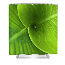 Green Twin Leaves Shower Curtain by Heiko Koehrer-Wagner