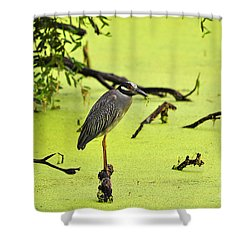 Green Yellow And Red Shower Curtain by Al Powell Photography USA