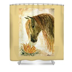 Greeting A Sunflower Shower Curtain