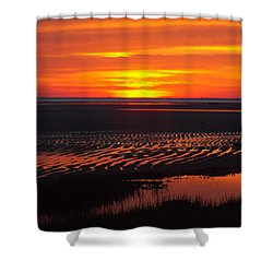 Shower Curtain featuring the photograph Greetings by Dianne Cowen