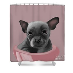 Grey Chihuahua In The Pink Shower Curtain