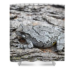 Shower Curtain featuring the photograph Cope's Gray Tree Frog by Judy Whitton