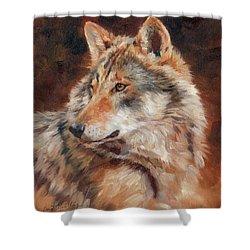 Grey Wolf Portrait Shower Curtain