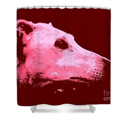 Greyhound Profile Shower Curtain by Clare Bevan