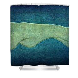 Greyhound Shower Curtain by Sandy Keeton