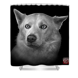 Greyscale Mila - Siberian Husky - 2103 - Bb Shower Curtain by James Ahn