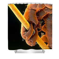 Grip Shower Curtain by Eye of Science