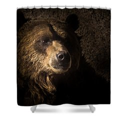 Grizzly 2 Shower Curtain