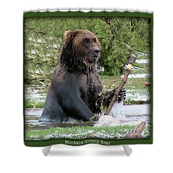 Grizzly Bear 07 Shower Curtain by Thomas Woolworth