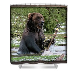 Grizzly Bear 08 Shower Curtain by Thomas Woolworth