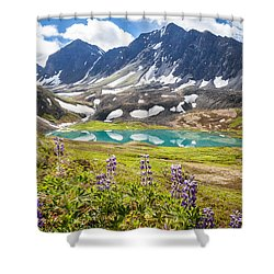Grizzly Bear Lake Shower Curtain