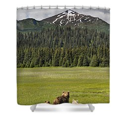 Shower Curtain featuring the photograph Grizzly Bear Mother And Cubs In Meadow by Richard Garvey-Williams