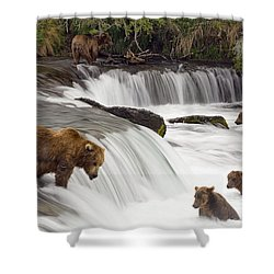 Grizzly Bears Fish At Brooks Falls In Shower Curtain by Chris Miller