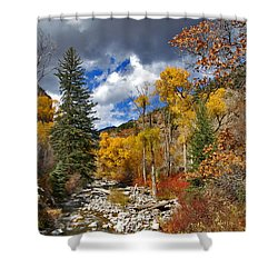Grizzly Creek Cottonwoods Shower Curtain by Jeremy Rhoades